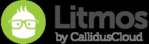 Litmos LMS piattaforma e-learning cloud saas